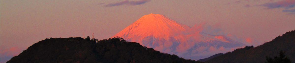 猫と古墳と富士山と